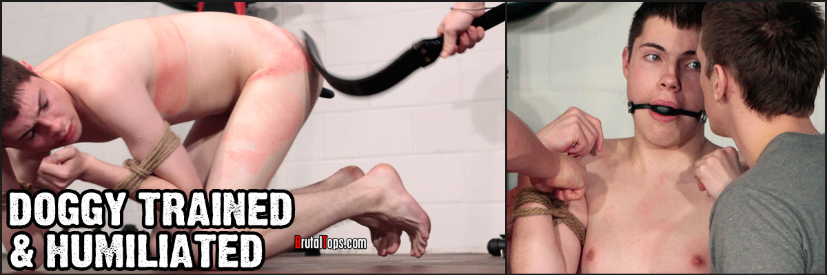 ROPE TIED : DOG TRAINING : HUMILIATION : PISS : GOB : DILDO